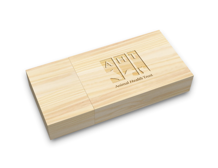 Maple Wood USB Drive Perspective