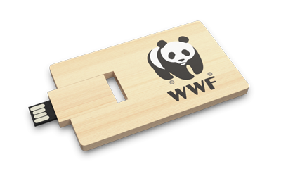 Wooden Credit Card Open